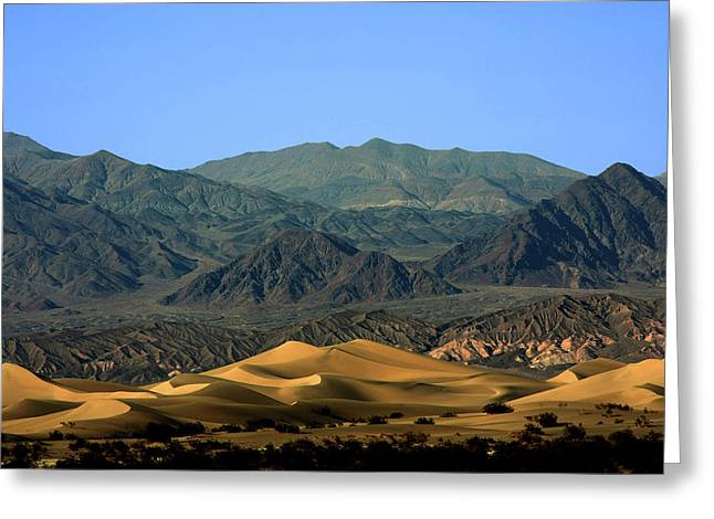 Hill Greeting Cards - Mesquite Flat Sand Dunes - Death Valley National Park CA USA Greeting Card by Christine Till