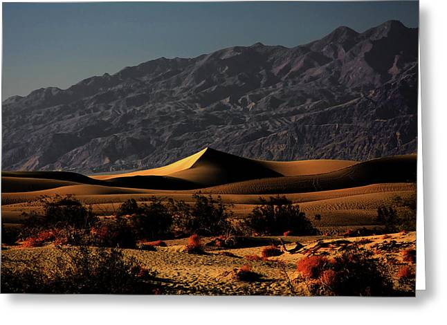 Rolling Hills Greeting Cards - Mesquite Flat Sand Dunes Death Valley - Spectacularly abstract Greeting Card by Christine Till