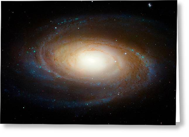 Hubble Greeting Cards - Messier 81 Greeting Card by Space Art Pictures