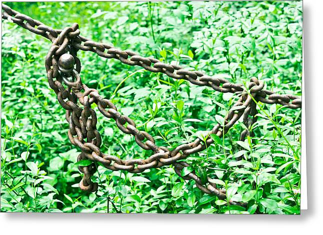 Steel. Grass Greeting Cards - Metal chain Greeting Card by Tom Gowanlock