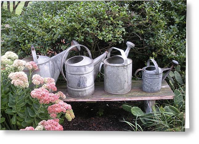 Sprinkling Can Greeting Cards - Metal Sprinkling Cans Greeting Card by Jeanette Oberholtzer