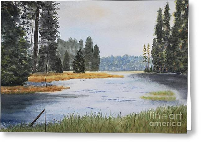 Stanton Allaben Greeting Cards - Metolius River Headwaters Greeting Card by Stanton Allaben