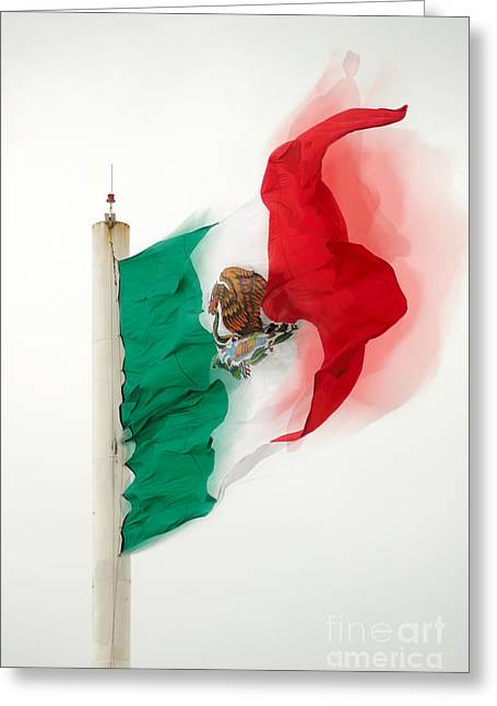 Snake Flag Greeting Cards - Mexican Flag Under A Strong Wind Greeting Card by Eduardo Machuca