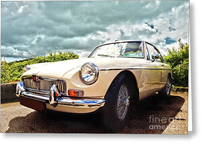 Mg Hdr Greeting Card by Terri Waters