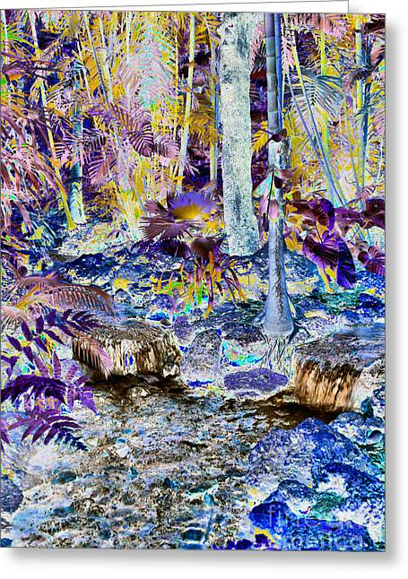 Water Garden Tapestries - Textiles Greeting Cards - Miami Rain Forest Greeting Card by Edna Weber