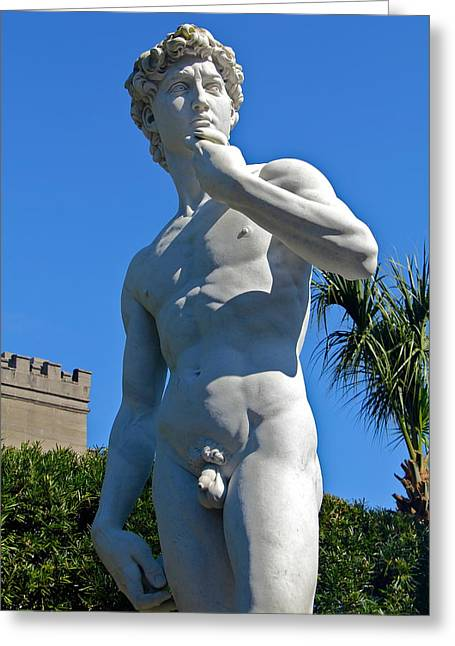 Michelangelo Greeting Cards - Michelangelos David Greeting Card by Denise Mazzocco