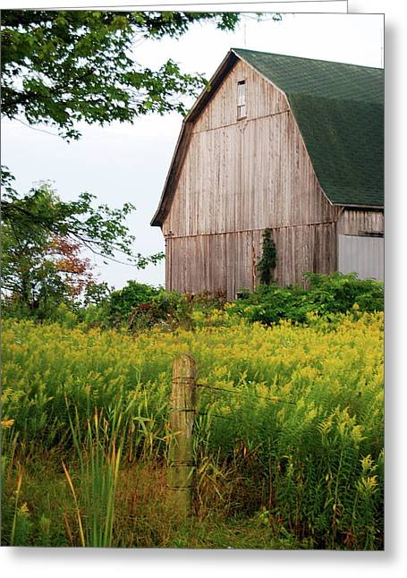 Old Fence Posts Greeting Cards - Michigan Barn Greeting Card by Michael Peychich