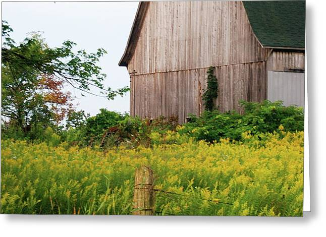 Michigan Barn Greeting Card by Michael Peychich