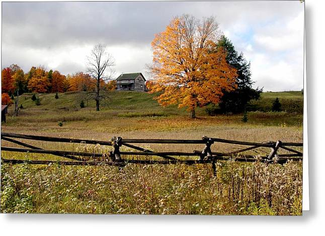 Fall Trees Greeting Cards - Michigan Countryside in the Fall Greeting Card by Daniel Whedon