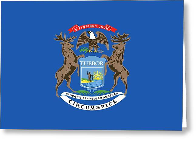 Michigan State Flag Greeting Card by American School