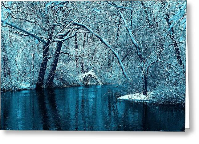 Hovind Greeting Cards - Michigan Winter 14 Greeting Card by Scott Hovind