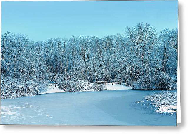 Hovind Greeting Cards - Michigan Winter 6 Greeting Card by Scott Hovind