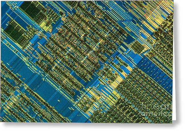 Transmitted Light Micrograph Greeting Cards - Microprocessor Greeting Card by Michael W. Davidson