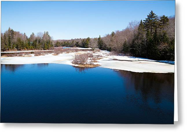 Mid Summer Greeting Cards - Mid April at the Green Bridge Greeting Card by David Patterson