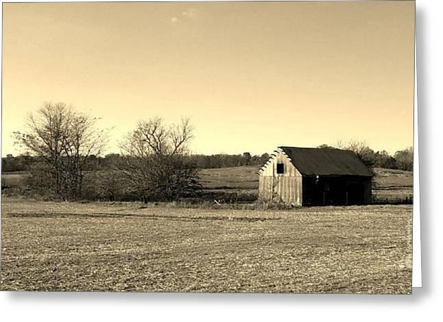 Mid Century Weathered Barn - Sepia Greeting Card by Scott D Van Osdol