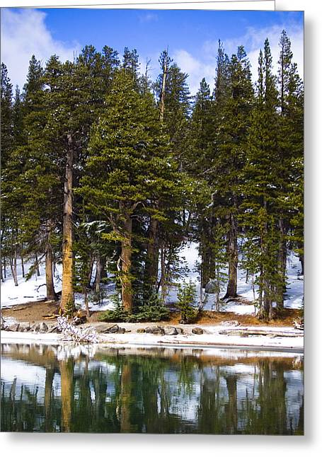 Snow Scenes Greeting Cards - Mid Day Melt Greeting Card by Chris Brannen