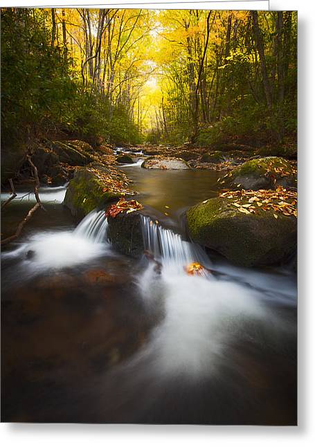 Tennessee River Greeting Cards - Middle Prong Creek Greeting Card by Ken Koskela