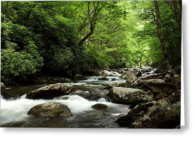 Tennessee River Digital Greeting Cards - Middle Prong Little River Greeting Card by Amanda Kiplinger