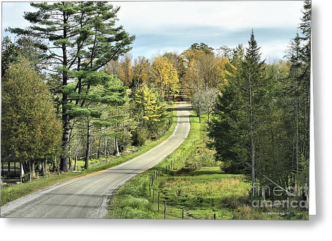 Country Dirt Roads Greeting Cards - Middle Road In Autumn Greeting Card by Deborah Benoit