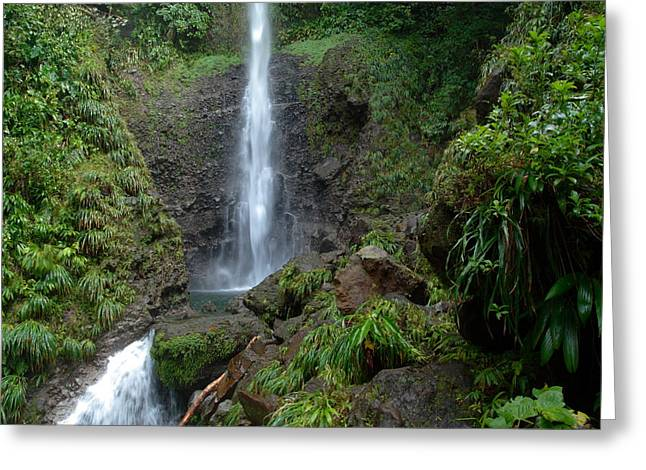 Middleham Waterfall In Dominica Greeting Card by Tropical Ties Dominica