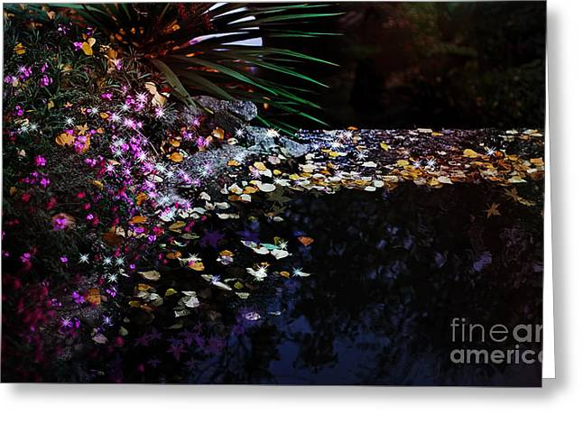Midnight Oasis Greeting Card by Jasna Buncic