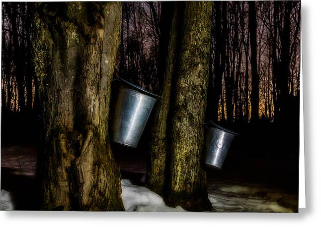 Sugaring Greeting Cards - Midnight Sugar Greeting Card by Chris Bordeleau