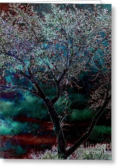 Souls Greeting Cards - Midnight Synergy Greeting Card by TLynn Brentnall