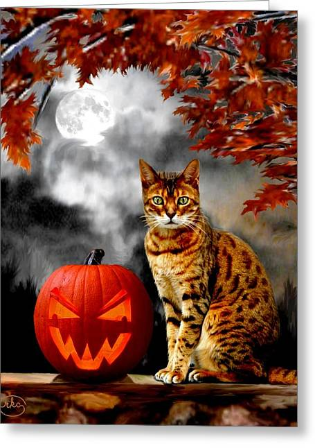 Recently Sold -  - Tears Greeting Cards - Midnight Tom Greeting Card by Ronald Chambers