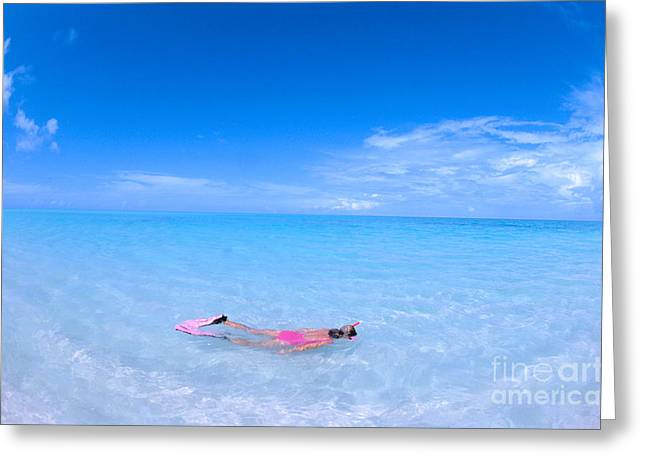 Snorkel Greeting Cards - Midway Atoll Greeting Card by Ed Robinson - Printscapes