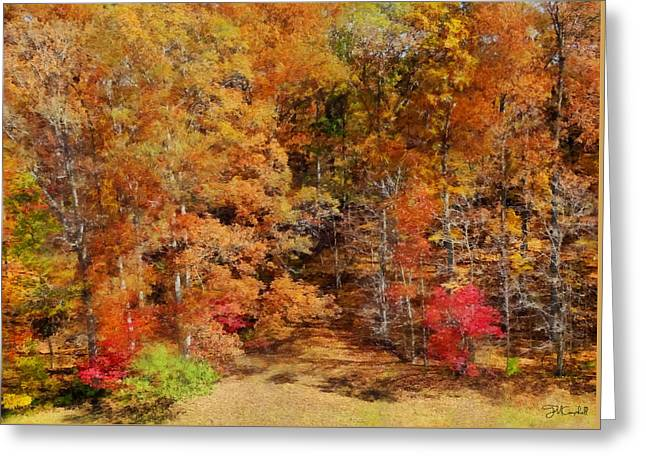 Midwest Fall Colors  Greeting Card by Theresa Campbell
