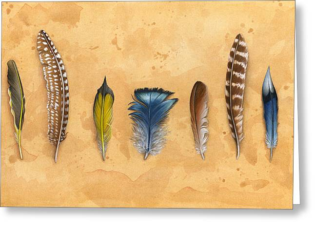 Wild Life Tapestries - Textiles Greeting Cards - Midwest Feathers Greeting Card by Kelsey Wilson