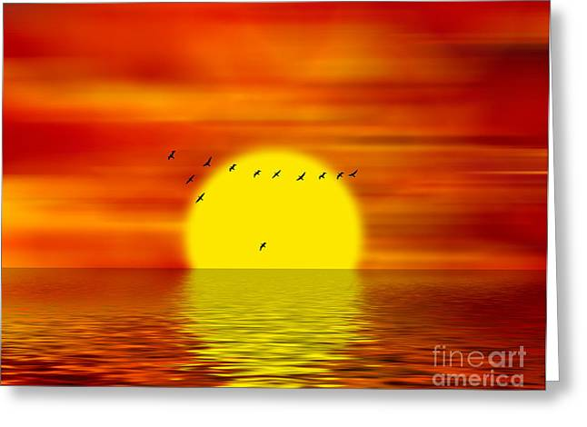 Gaggle Greeting Cards - Migrating Birds Greeting Card by Michal Boubin