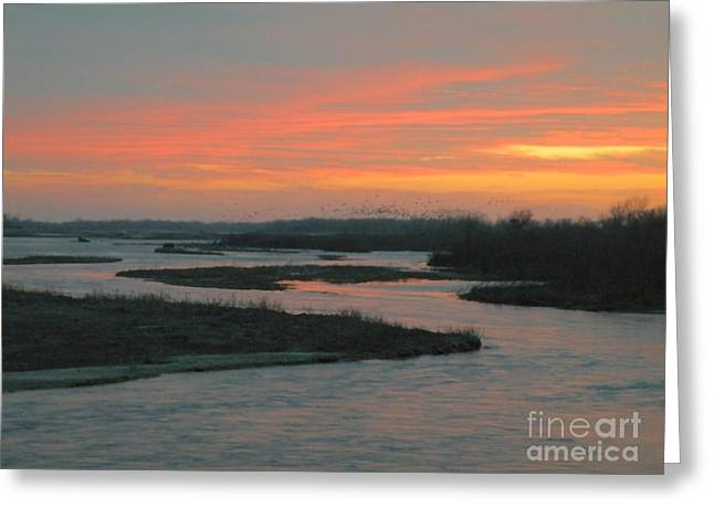 Recently Sold -  - ist Photographs Greeting Cards - Migration on the Platte Greeting Card by Christine Belt