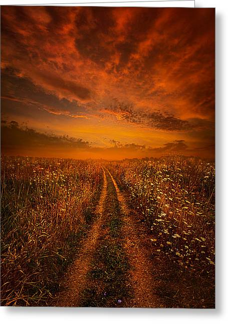 Green Leafs Greeting Cards - Miles and Miles Away Greeting Card by Phil Koch