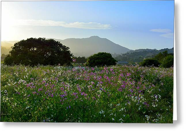 Mountain Valley Greeting Cards - Milkmaids Flowers and Mt. Tamalpais Greeting Card by Brian Tada