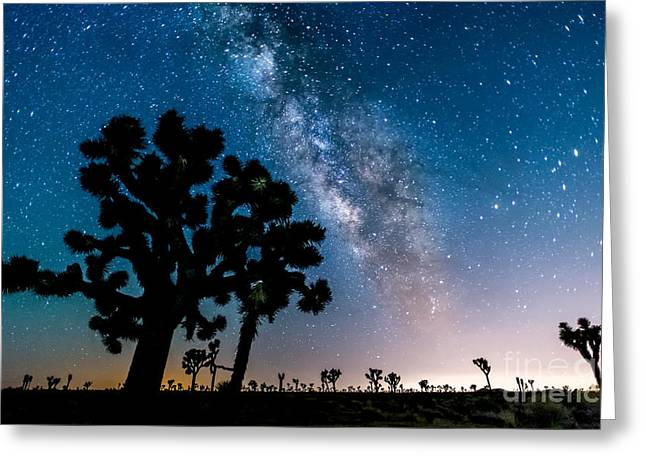 Star Greeting Cards - Milky in Joshua Tree Greeting Card by Art K