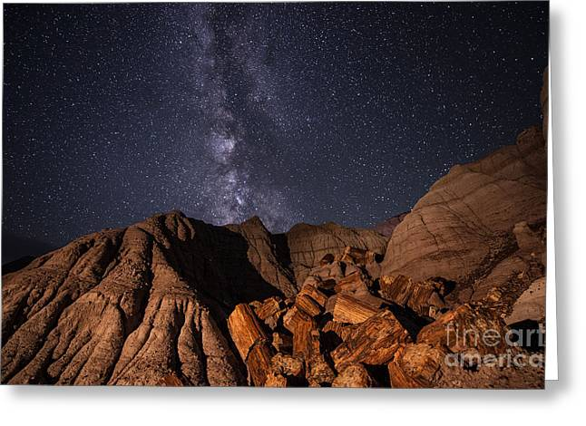 Petrified Forest National Park Greeting Cards - Milky Way and Petrified Logs Greeting Card by Melany Sarafis
