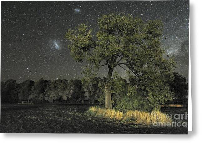 Moonlit Night Greeting Cards - Milky Way Over Parkes Observatory Greeting Card by Alex Cherney, Terrastro