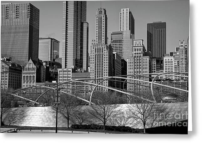 Citizens Park Greeting Cards - Millennium Park V visit www.AngeliniPhoto.com for more Greeting Card by Mary Angelini