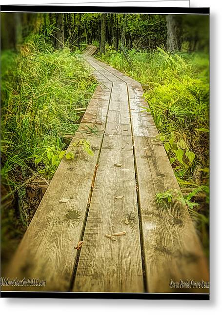 Nature Center Pond Greeting Cards - Millers Pond Board Walk Greeting Card by LeeAnn McLaneGoetz McLaneGoetzStudioLLCcom