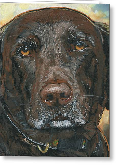 Chocolate Lab Greeting Cards - Millie Greeting Card by Nadi Spencer