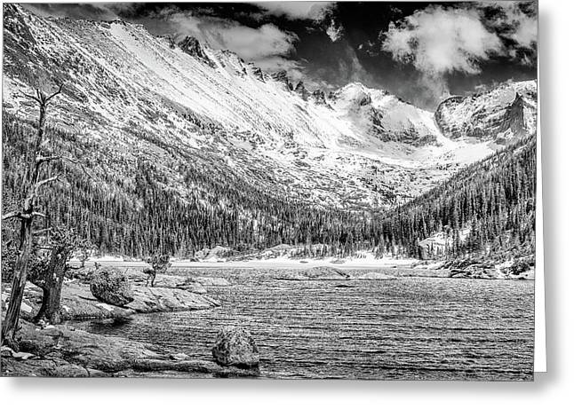 Mills Glacier Greeting Cards - Mills Lake Monochrome Greeting Card by Eric Glaser