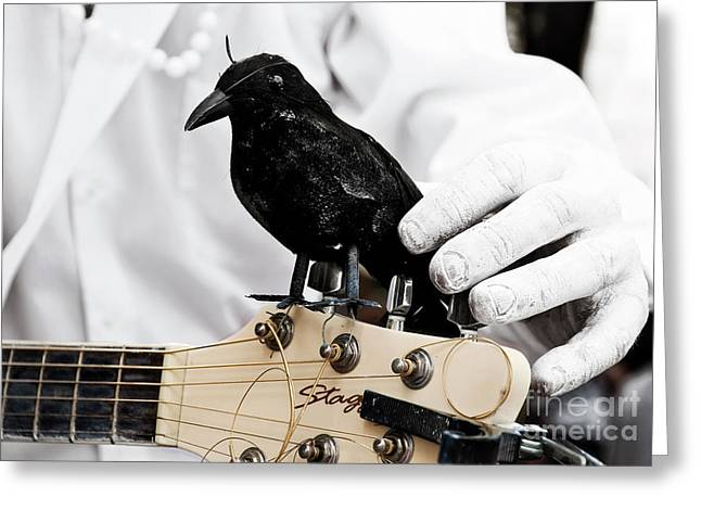 Crow. Bird Music Greeting Cards - Mimes Guitar Accompanist Greeting Card by Kathleen K Parker