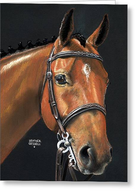 Dressage Pastels Greeting Cards - Miner - Bay Horse portrait Greeting Card by Heather Gessell