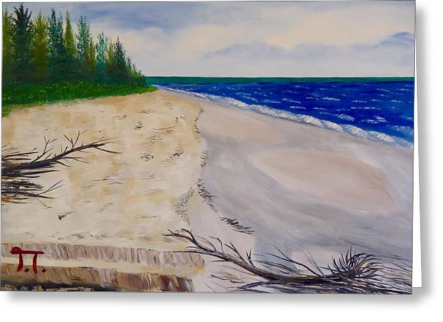 Rocks Greeting Cards - Miners Beach Pictured Rocks Greeting Card by Troy Thomas
