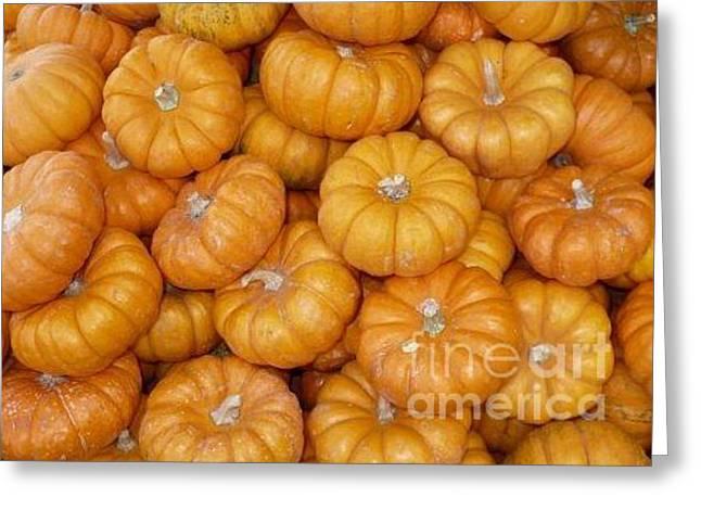 Mini Pumpkins Greeting Cards - Mini Pumpkins Card Greeting Card by Carol Groenen