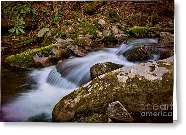 Unique Art Greeting Cards - Mini Water Fall Greeting Card by Dave Bosse