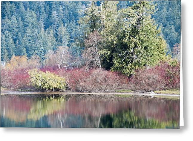 Subtle Colors Greeting Cards - Mirrored Lake Greeting Card by SH Suddes