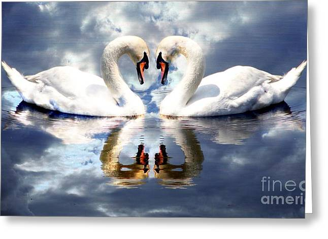 Swans... Greeting Cards - Mirrored White Swans with Clouds Effect Greeting Card by Rose Santuci-Sofranko