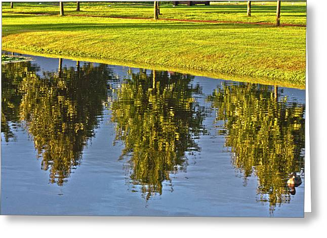 Reflection In Water Greeting Cards - Mirroring Trees Greeting Card by Heiko Koehrer-Wagner